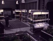 Voyager Hydroponischer Garten
