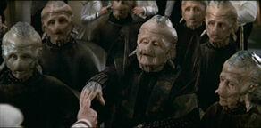 A group of Evora, including Regent Cuzar (2375)