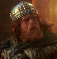 Male Viking 7