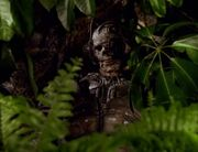 Borg skeleton