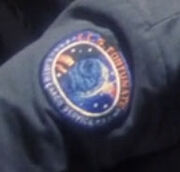 ECS Fortunate patch