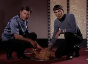 McCoy, Alfa canine and Spock