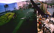Klingon Bird-of-Prey and humpback whale filming