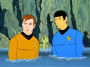 Kirk and Spock wet