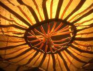 Lights sack close up