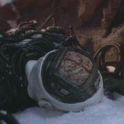 Borg brain