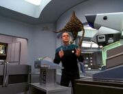 Der Doktor kämpft gegen den Makrovirus
