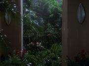 Rain on Banea