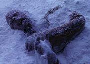 Klingon prisoner frozen