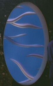 Xyrillian fish