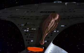 Junior attached to the <i>Enterprise</i>