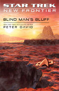 Blind Man's Bluff solicitation cover