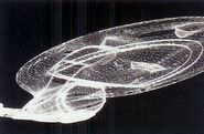 Wire model for Star Trek-Voyager
