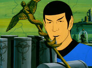 Symbol and Spock