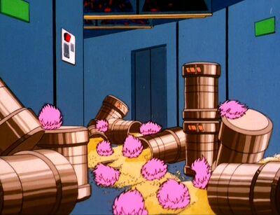 Quintotriticale in den Korridoren verschüttet