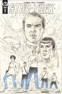 Star Trek Year Five 1 cover RI B