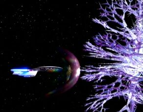 Crystalline entity-enterprise d