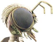 Xindi-Insectoid head CGI