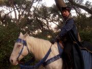 Q on horseback