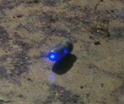 Stun grenade, activated