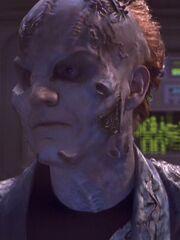 Infizierte Tarkaleanerin 2153