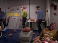 Sisko verfolgt Kirks Schritte