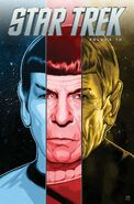 Star Trek, Vol 13 tpb cover