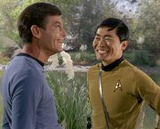 McCoy and Sulu, Shore Leave Planet