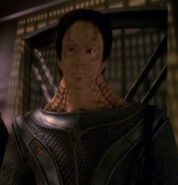 Cardassian guard 5 2346