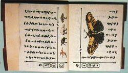 Baku bookpage