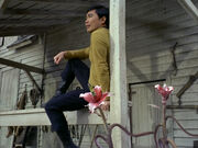 Sulu on the farm