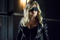 Black Canary Caity Lotz-18