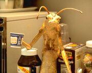 Alien worm