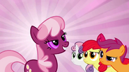 640px-The CMC look at Cheerilee S2E17
