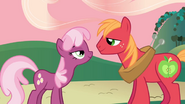 640px-Cheerilee and Big McIntosh look into each other's eyes S2E17
