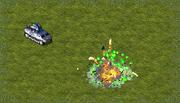 Archon 17 FVSpiderBomb