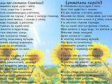Поезія:Балада про соняшник (римована версія)