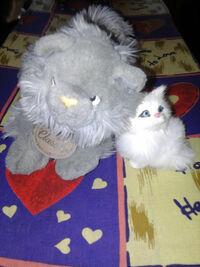 Мяунжик и Мурка