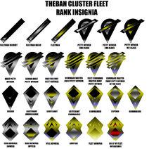 TC-Fleet-Insignia2