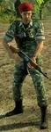 Plav commander
