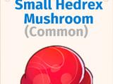 Hedrex Mushrooms