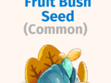 Fruit Bush Seed