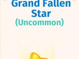 Grand Fallen Star