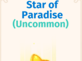 Star of Paradise