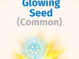 Glowing Seed