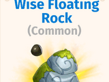 Wise Floating Rock