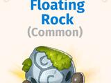 Floating Rock