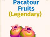 Pacatour Fruits