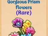 Gorgeous Prism Flowers
