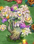 Biglifetree